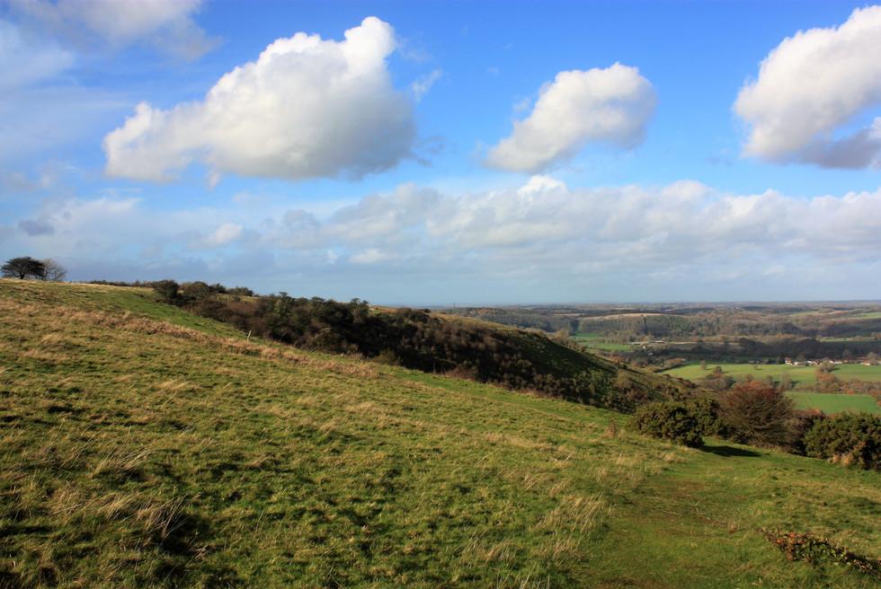 IMG_1399 butser hill.jpg