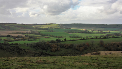 IMG_1423 butser hill.jpg