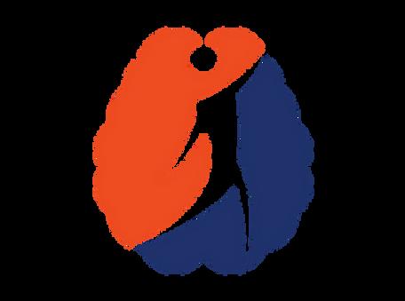 DSP Transparent Logo Color.webp
