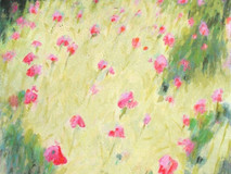 Poppy Field -mm- 48x36