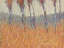 Boulder Hill o/c 16x12