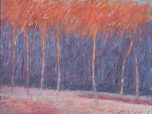 Walk in the Woods  1 o/c 24x30