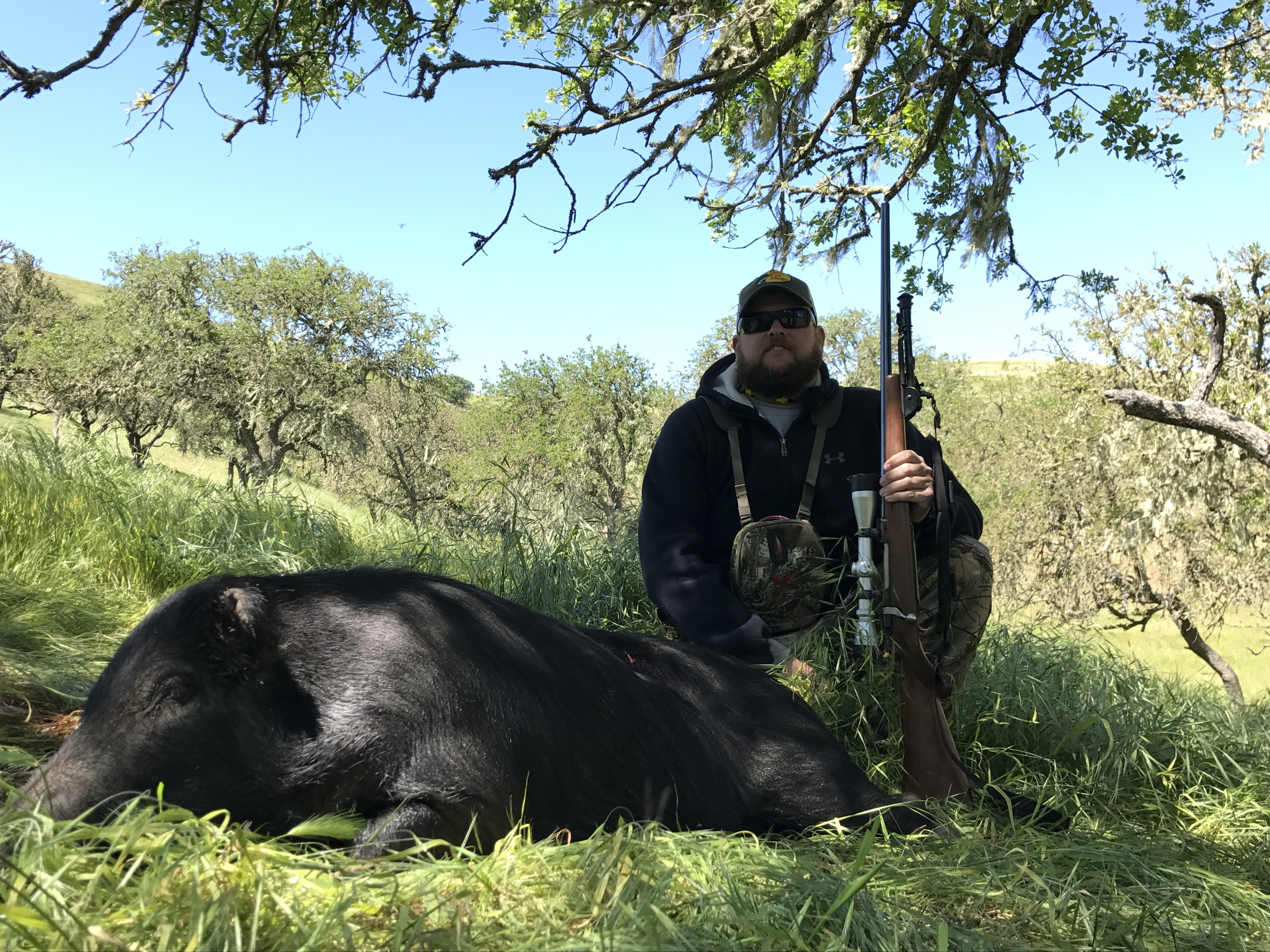 Wild Pig Hunt