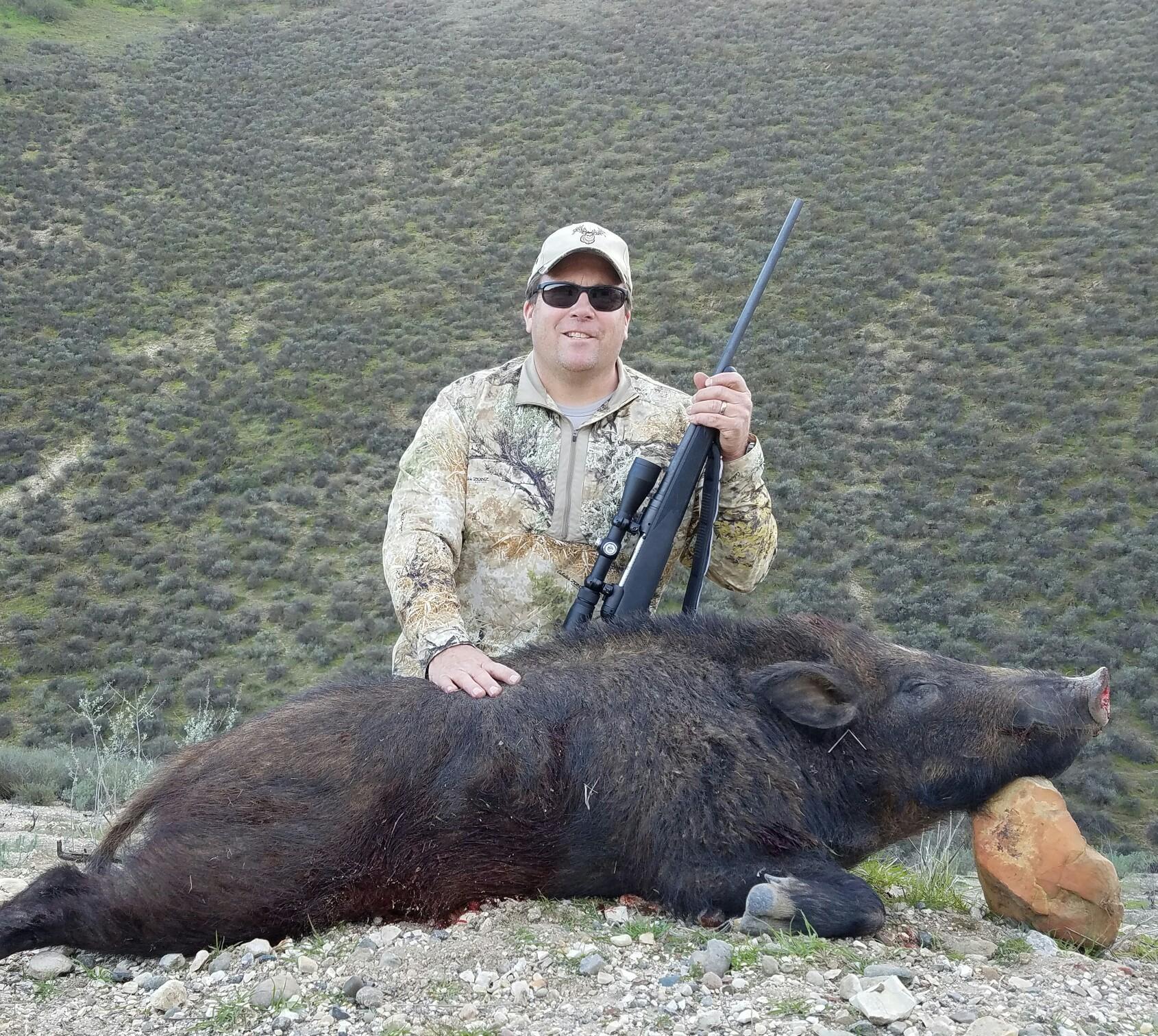 California Wild Pig