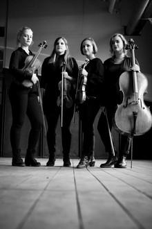 mondena quartet