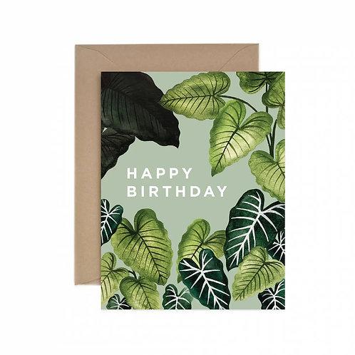 Alocasia Happy Birthday Greeting Card