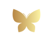 color_Butterfly_logo_transparent.png