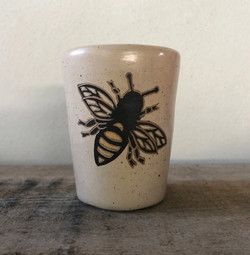 Bumble bee orchid pot mini orchids