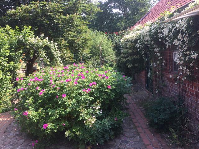 Privelacker Paradiesgarten