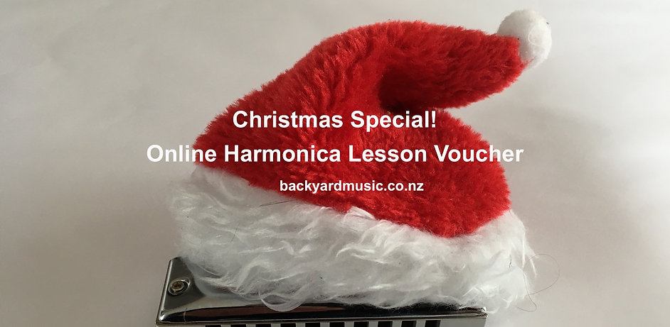 1 hour Online Harmonica Lesson Christmas Voucher
