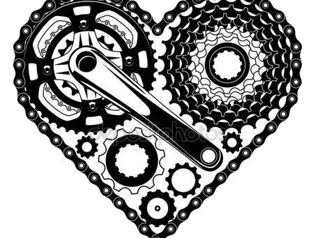 Bicicletta: una love story lunga più di 30 anni