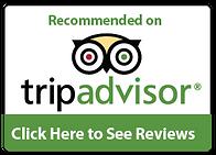 Link to Vinoklet Review on Tripadvisor