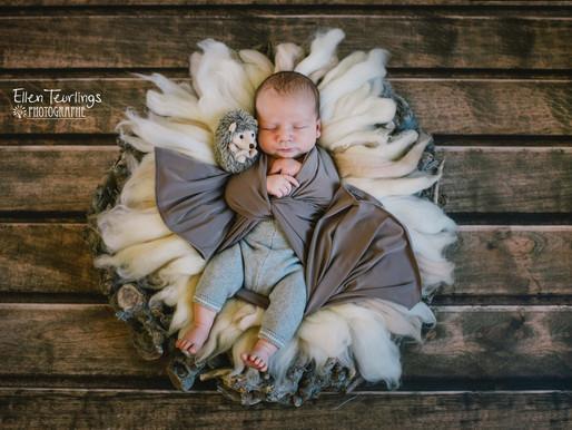 Séance bébé Ellen Teurlings/ Pixel.len Photography