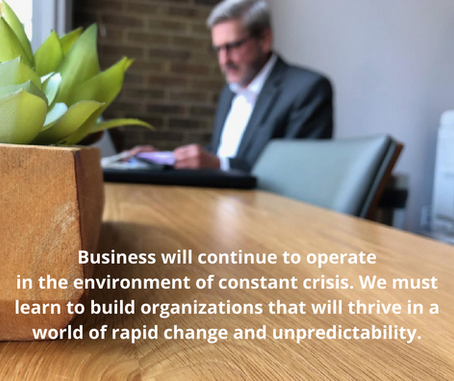 Business. Navigating the Environment of Constant Crisis