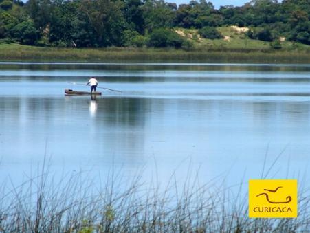 Curicaca é unanimidade para mais uma gestão na Reserva da Biosfera da Mata Atlântica do RS