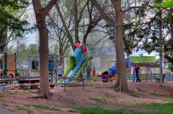 CC Zoo 8