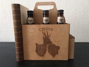 Proyecto Caleya