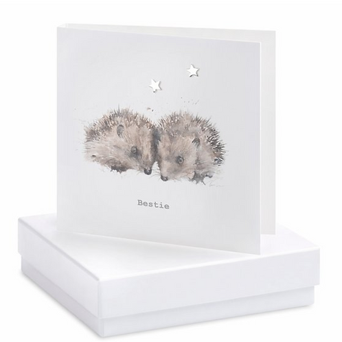 Hedgehog Boxed Heart Earring Card