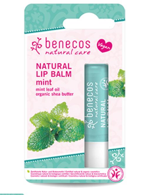 Organic Mint Lip Balm by Benecos