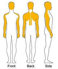body diagram - ihm.jpg