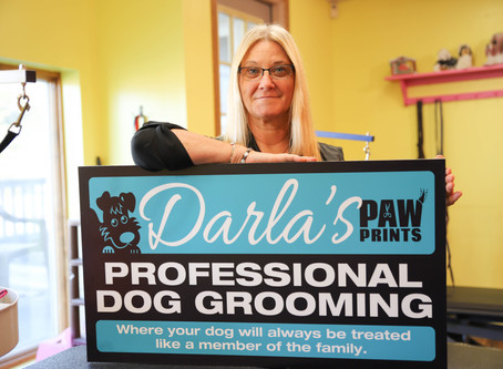 Meet the Owner, Darla!