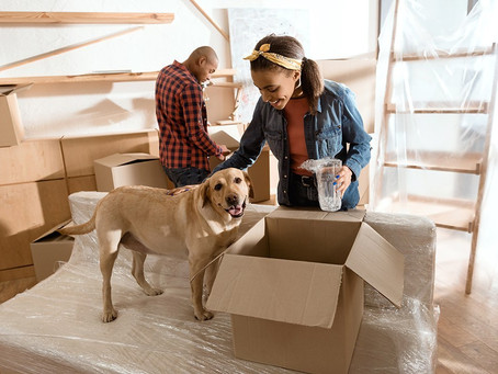 Moving? Here are some Tips to help your pet adjust.