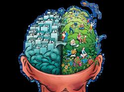 Dos hemisferios