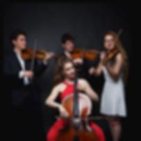Quatuor-Akos VIOLON.png