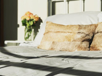 Fancy a snooze in the afternoon sun_ ...