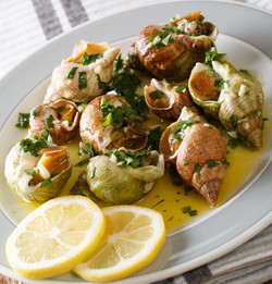 Seafood_  whelk, sea snails bulot with a