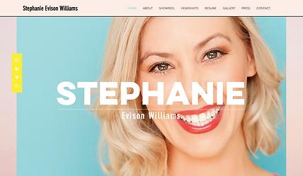 stephevisonwilliams.com