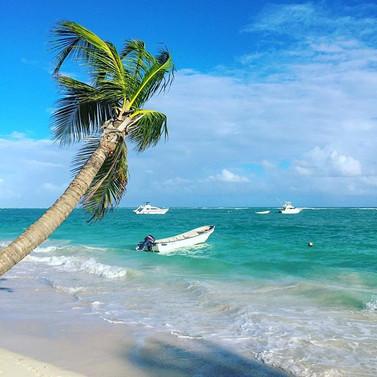 Who is ready for a beach trip_ 🙋♀️ Nex