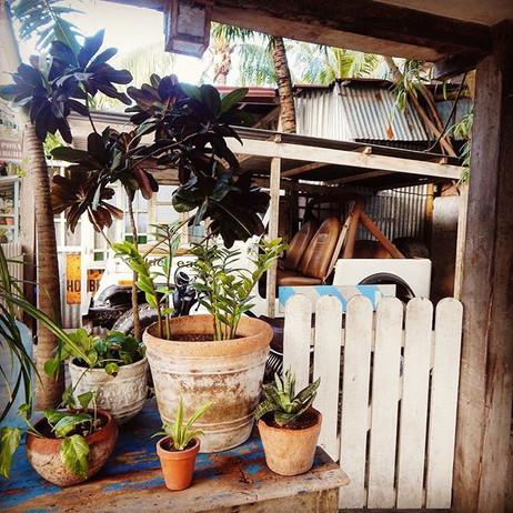 🌿 Cultivate your garden. 🌿_#tulum #gar