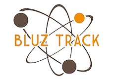cropped-logo-bluztrack-site-1_edited.png