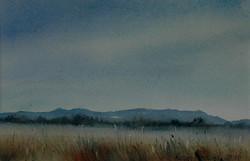 Norfolk Plains