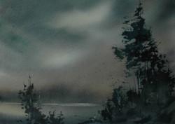 Tamar Fog