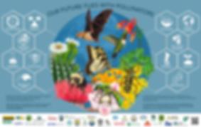 2020-Pollinator-Poster-Image-Final@2x.pn