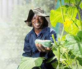 Ghana farmer.JPG