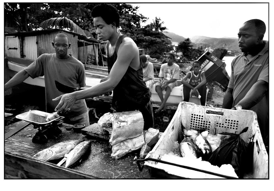 Fisherman - Dominica