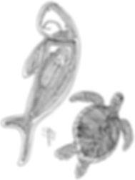 June Djiagween's Sketch