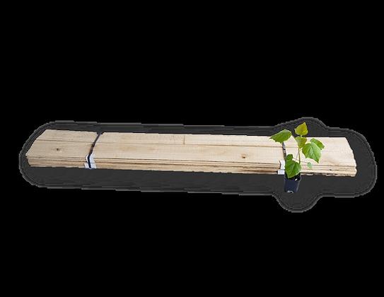 5mm Paulownia-Leisten für Surfboards