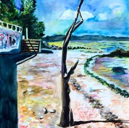 Welwyn Preserve Beach