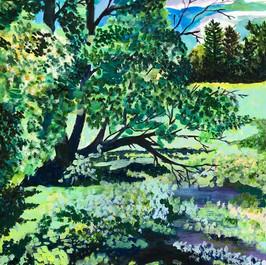 Bailey Arboretum Swamp