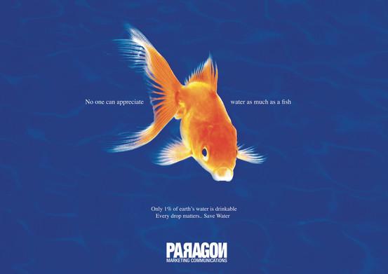 Paragon - Save  Water Fish.jpg