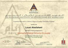 RIAM-Certificate of Attendance.jpeg