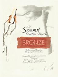 2004 Summit Awards_Challenges_Bronze.jpe