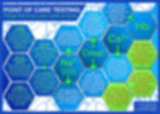 POCT Infographic v1.0.jpg