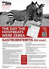 Zebra poster for SAM.jpg