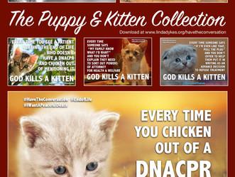 #HaveTheConversation Kitten memes