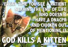DNACPR Kitten 2.jpg
